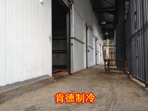 湖南长沙冷库设计安装公司推荐-肯德冷库