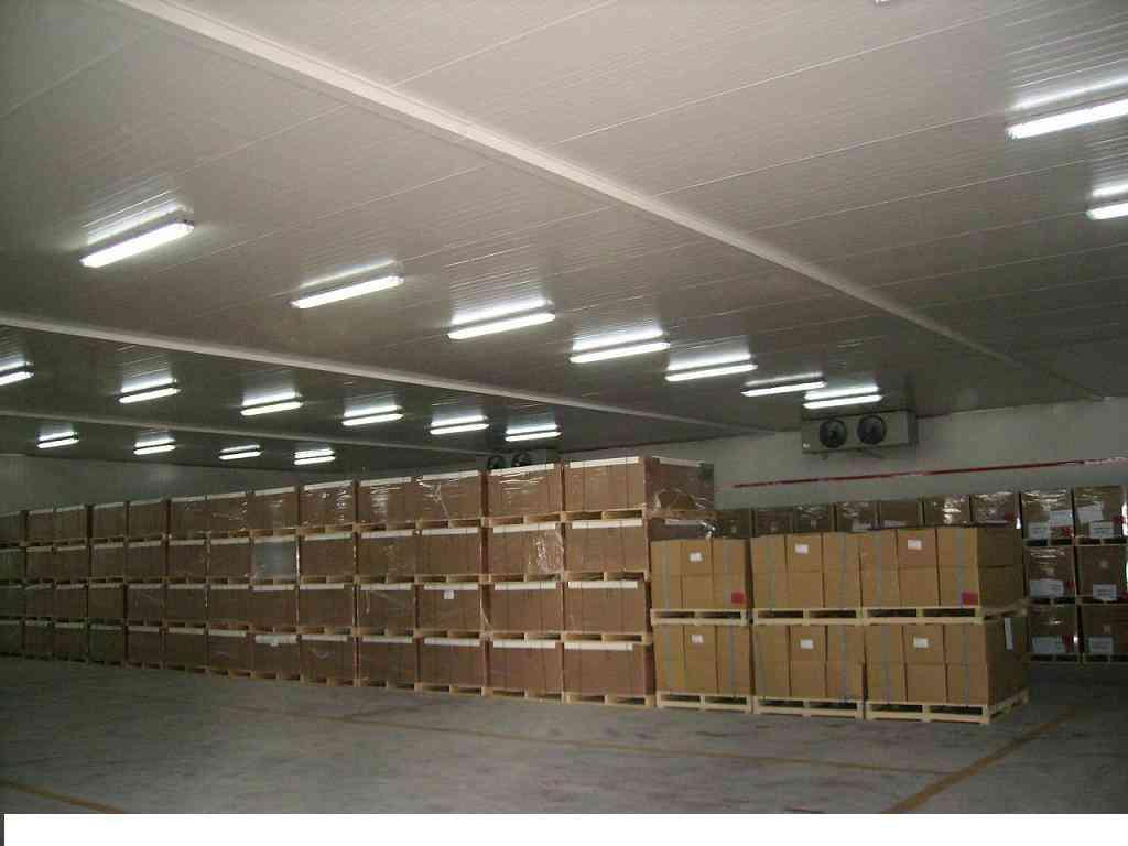 中大型冷库工程造价建设方案模板