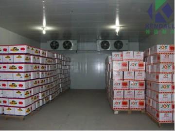 物流公司图片_葡萄冷藏保鲜技术要点 葡萄冷库贮藏条件注意事项-【肯德冷库】