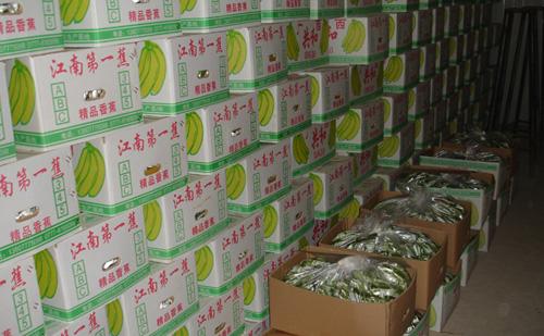 香蕉冷库贮藏保鲜技术介绍-肯德冷库