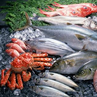 <b>海鲜水产行业欧宝体育平台官方解决方案</b>