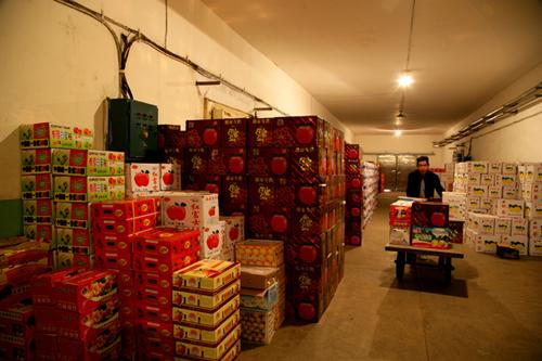 建一个10吨果蔬冷库造价要多少钱?