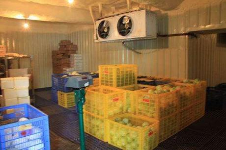 建造水果保鲜冷库要注意哪些问题