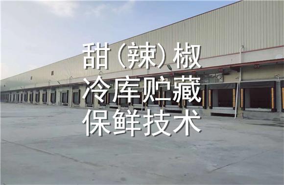 甜(辣)椒欧宝体育平台官方贮藏保鲜技术.jpg